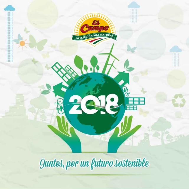 2018, el año de la sostenibilidad