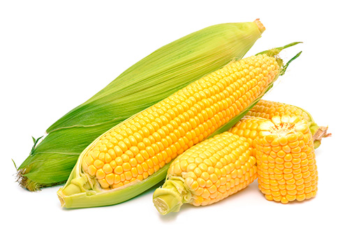 Resultado de imagen para maiz dulce