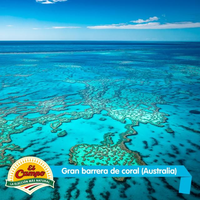 Abril: Gran Barrera de Coral (Australia)